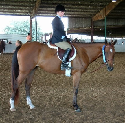 TB Filly, 3yo, Hunter Pleasure class