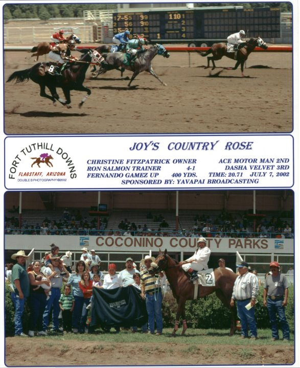 1998 QH Mare, out of Rammers Rose